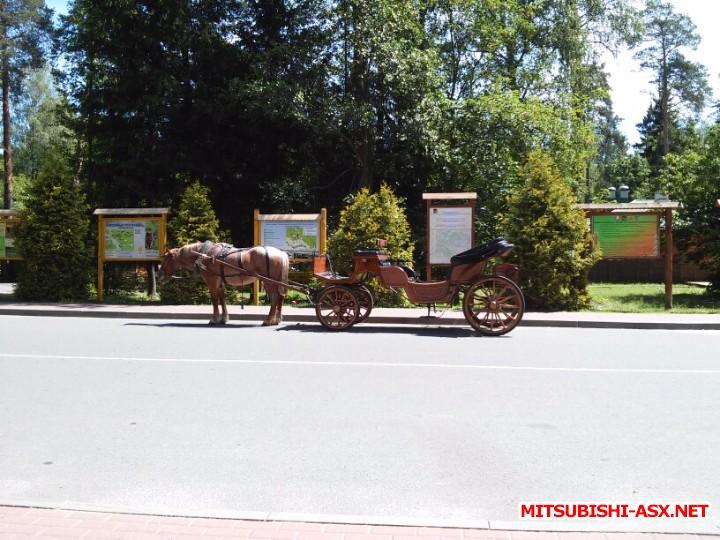 Автопутешествие в Беларусь или в поисках Крамбамбули - 20160610_124943.jpg