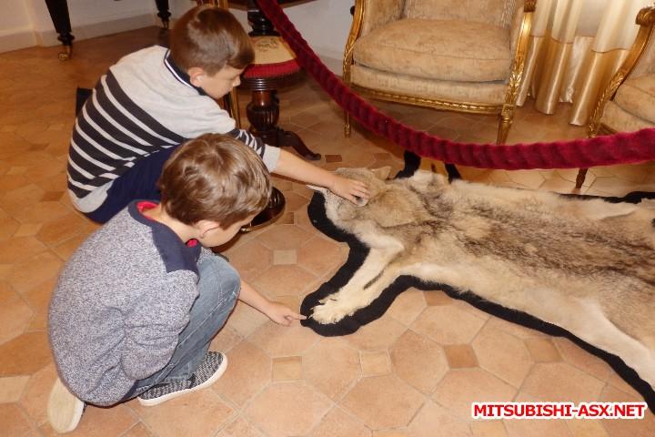 Автопутешествие в Беларусь или в поисках Крамбамбули - P7080825.JPG