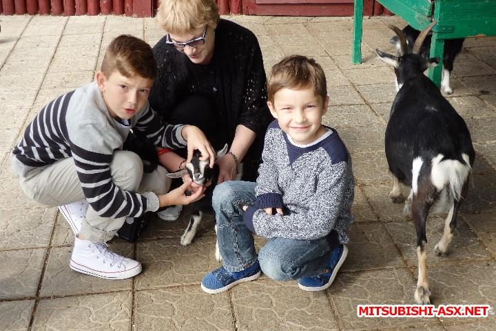 Автопутешествие в Беларусь или в поисках Крамбамбули - P7100932.JPG