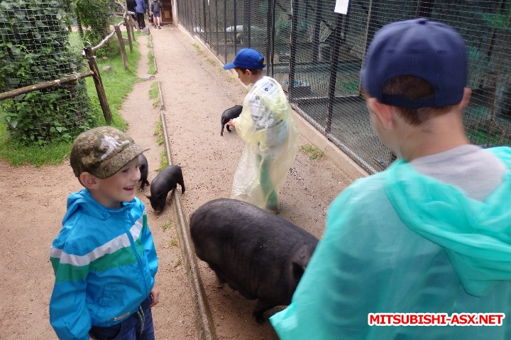 Автопутешествие в Беларусь или в поисках Крамбамбули - P7181287.JPG