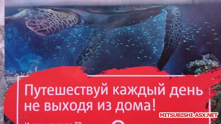 Летний отдых на Черном море 2017 - DSC_0348.JPG