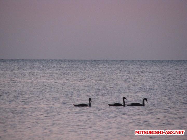 В Крым на машине - IMG_9191.JPG
