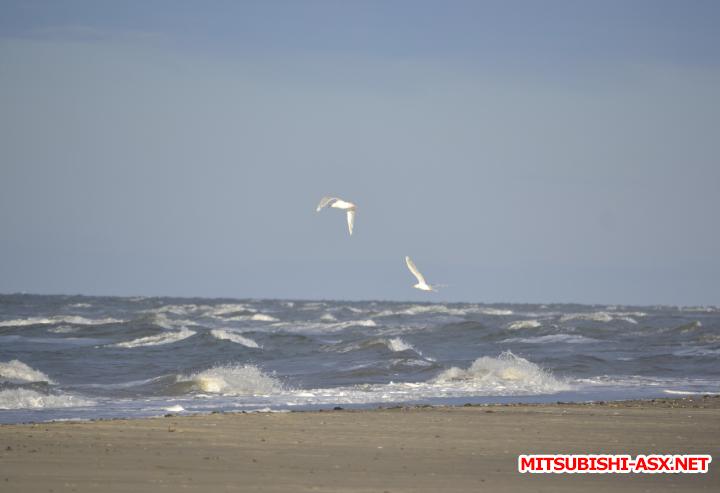 Карское море - на ASX - Снимок34-1.PNG
