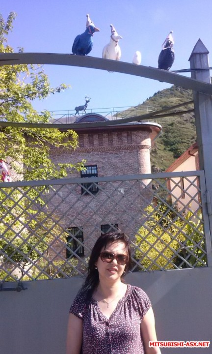 Дом с птичками и оленем на крыше - CAM00883.jpg