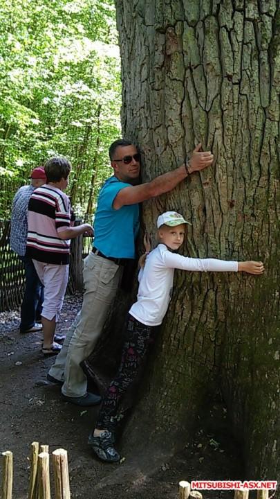 Автопутешествие в Беларусь или в поисках Крамбамбули - 20160608_153819.jpg